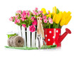 Roses and tulips with garden tools. Isolated on white background
