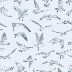 pattern of seagulls