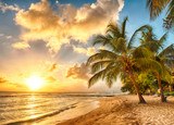 Fototapety Barbados