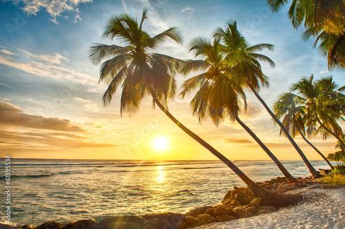 Barbados © Fyle