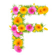 "Spring color letter with flower ""F"""