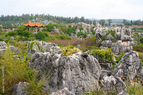 Shi Lin Stone forest national park. Yunnan. China.