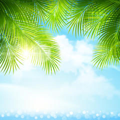 Palm leaves with bright sunlight. Vector