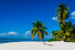 canvas print picture - Tropical sandy beach with palm trees, Dominican Republic