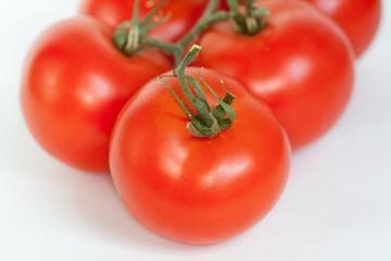 tomates sur fond blanc