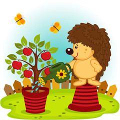hedgehog watering a tree with apples -  vector  illustration