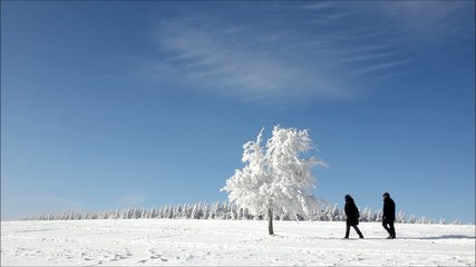 Wanderer in Winterlandschaft