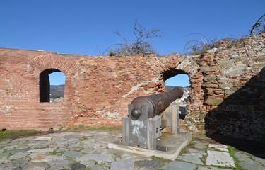 Cannone sulla fortezza di Savona