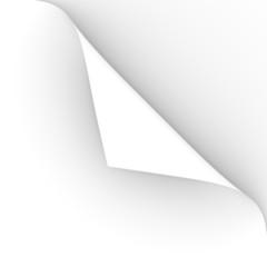 pagina foglio