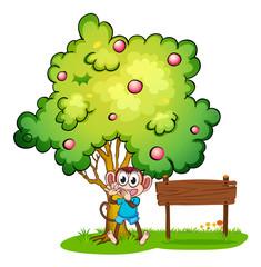 An empty signboard beside the monkey under the tree