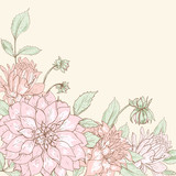 Dahlia background 4