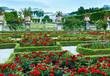 Summer garden with rose flowerbed (Salzburg, Austria)