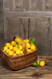 Lemons in the basket
