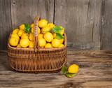 Lemon - 61432926