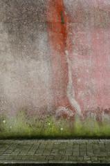 Hintergrund Wand mit Algen und Flechten