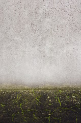 Hintergrund Wand und Boden mit Moos