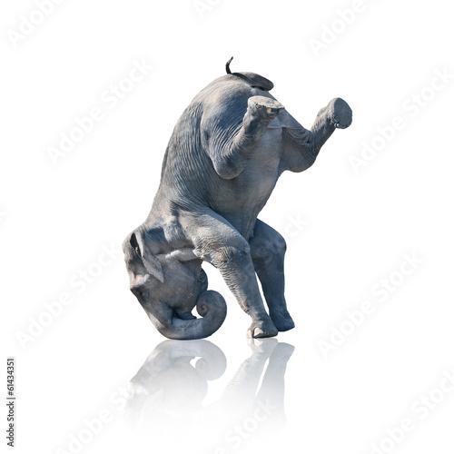 Fotobehang Olifant Elefant