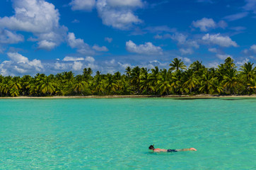 Diving, dive, coast of the Caribbean Islands, Saona, Dominicana