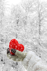 Woman hand holding a red heart on a snowy background