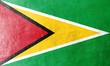 Guyana Flag painted on leather texture