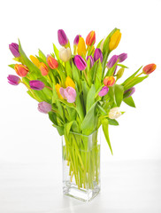 Vase of Tulips isolated