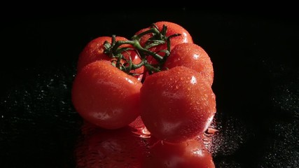 Fresh red tomatoes on dark background, revolving turntable