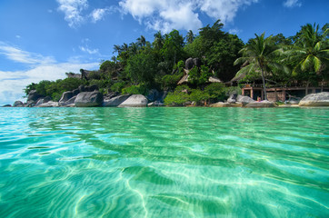 Tropical Paradise - lovely beach view