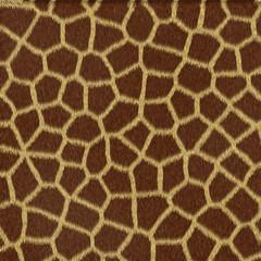 Texture di giraffa, fondo astratto