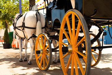 Horse carriage waiting for a ride in a andalusian fair.