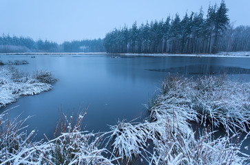 cold winter morning over wild lake