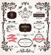 Vector design elements and calligraphic decorations for wedding