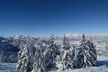 Berglandschaft Winter mit Bäume