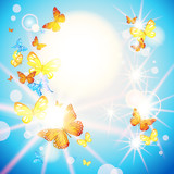 Beautiful butterflies background