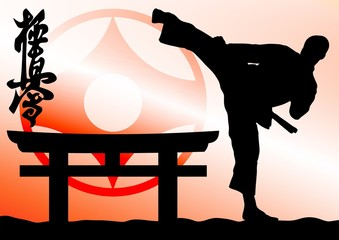 Martial arts colored  simbol, poster texture background. Fist.