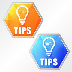 tips and bulb symbol, two colors hexagons web icons