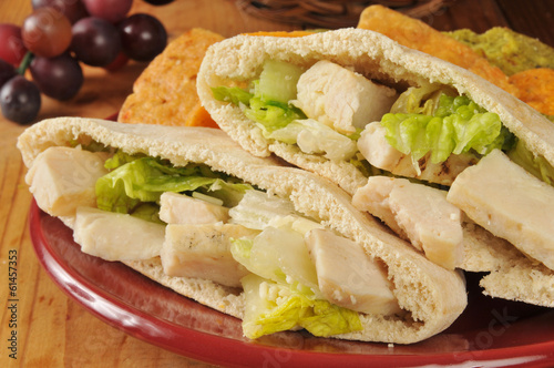 Chicken Caesar Pita Closeup