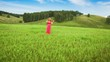 Violinist Plays on a Green Meadow, Rehearsal on the nature