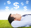 businessman  thinking money and goal on a meadow