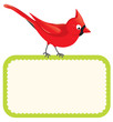 Red bird with blank sign