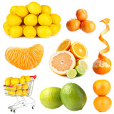 Collage of citrus isolated on white