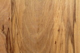 textured wood veneer with veins