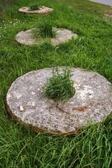 old millstone on green grass