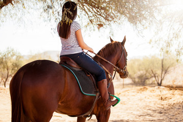 Horseback riding on a sunny day