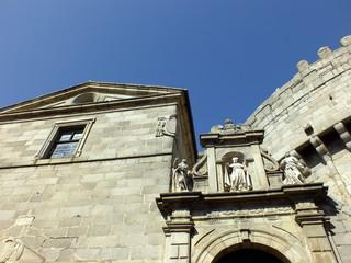 cimorro de la catedral de avila