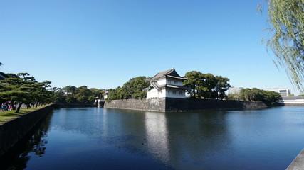 江戸城 (快晴皇居のお堀を泳ぐ鳥)  インターバル撮影