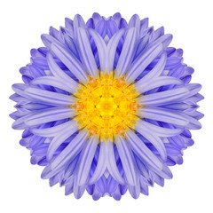 Blue Chrysanthemum Mandala Flower Kaleidoscope Isolated on White