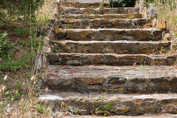 ancient stone staircase in the Park