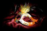 Carnival Mask - 61480114