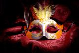 Carnival Mask - 61480162