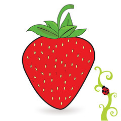 Strawberry fruit and ladybug vector illustration